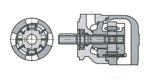 Пластинчатый гидромотор