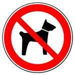 Запрещающие знаки. Запрещается вход (проход) с животными